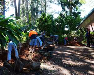 Members of Lions work on the Garden Reduction Project